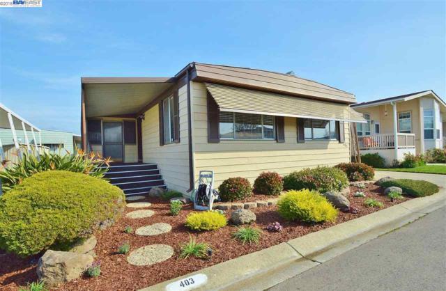 403 Santa Monica, San Leandro, CA 94579 (#BE40808069) :: The Dale Warfel Real Estate Network