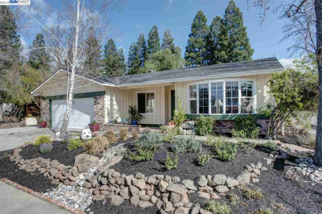 590 Mission Dr, Pleasanton, CA 94566 (#BE40811070) :: The Kulda Real Estate Group