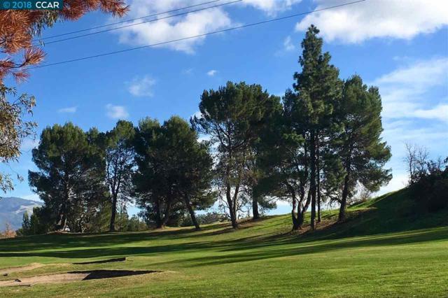 315 Masters Ct, Walnut Creek, CA 94598 (#CC40806988) :: The Goss Real Estate Group, Keller Williams Bay Area Estates