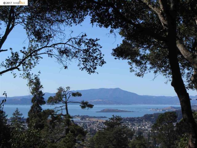 2707 Rose, Berkeley, CA 94708 (#EB40801465) :: The Kulda Real Estate Group