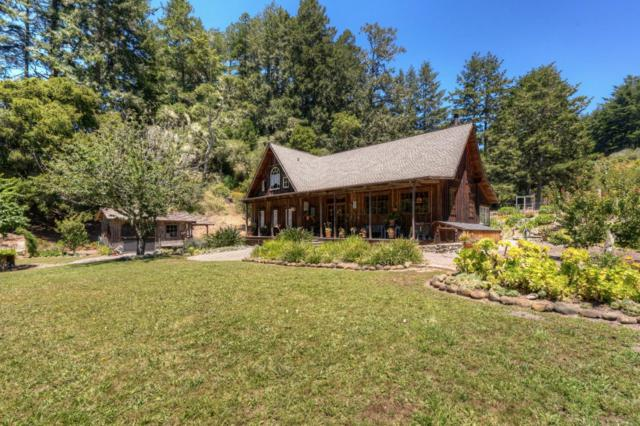 400 Canyon Rd, Pescadero, CA 94060 (#ML81593997) :: Astute Realty Inc
