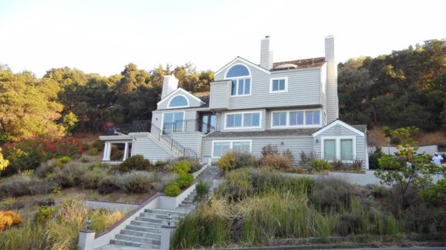 10377 Avenida Ln, Cupertino, CA 95014 (#ML81673718) :: Brett Jennings Real Estate Experts