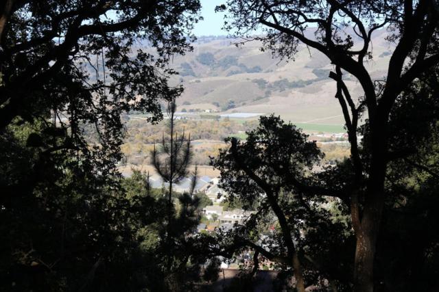 0 Pine Tree Ave, Aromas, CA 95004 (#ML81686275) :: Brett Jennings Real Estate Experts