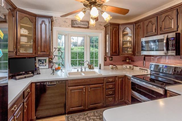 239 N El Monte Ave, Los Altos, CA 94022 (#ML81688546) :: Brett Jennings Real Estate Experts