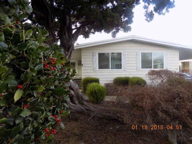 69 Mulberry Ct 69, Morgan Hill, CA 95037 (#ML81689163) :: Myrick Estates Team at Keller Williams