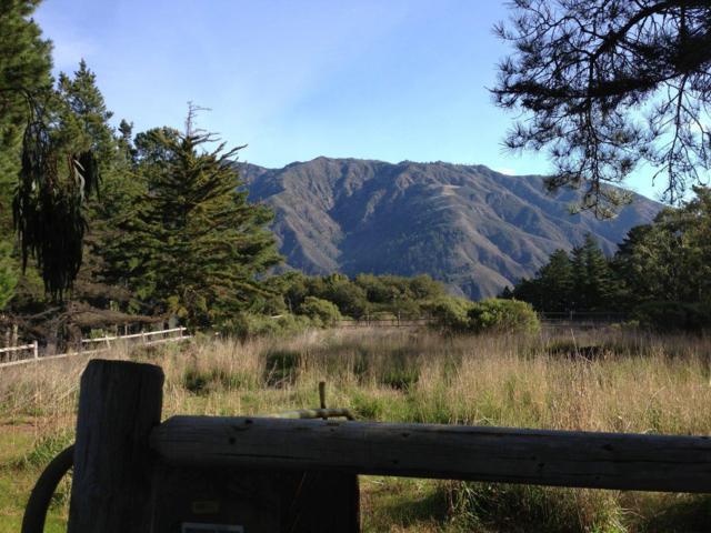 0 Pfeiffer Ridge Rd, Big Sur, CA 93920 (#ML81693558) :: The Goss Real Estate Group, Keller Williams Bay Area Estates