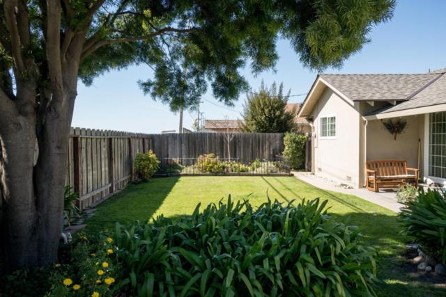 238 La Mesa Dr, Salinas, CA 93901 (#ML81695134) :: Astute Realty Inc