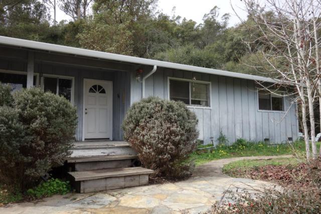 260 Big Tree Ln, Watsonville, CA 95076 (#ML81696079) :: Astute Realty Inc