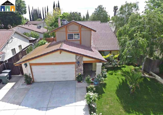 2964 Butler Dr, Tracy, CA 95376 (#MR40821031) :: The Dale Warfel Real Estate Network