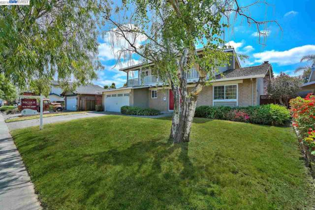 5228 Falmouth Pl, Newark, CA 94560 (#BE40825192) :: Strock Real Estate