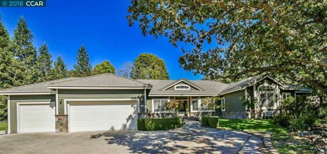 55 Mcconnell Lane, Walnut Creek, CA 94596 (#CC40844130) :: Perisson Real Estate, Inc.