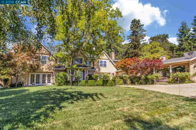 3 Honey Hill Court, Orinda, CA 94563 (#CC40845898) :: Strock Real Estate