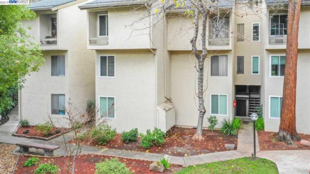 2724 Oak Road, Walnut Creek, CA 94597 (#BE40847559) :: Brett Jennings Real Estate Experts