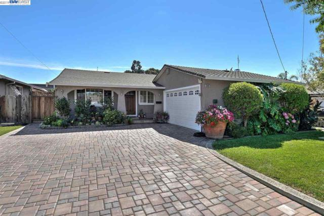 35907 Cabral Dr, Fremont, CA 94536 (#BE40855944) :: The Kulda Real Estate Group