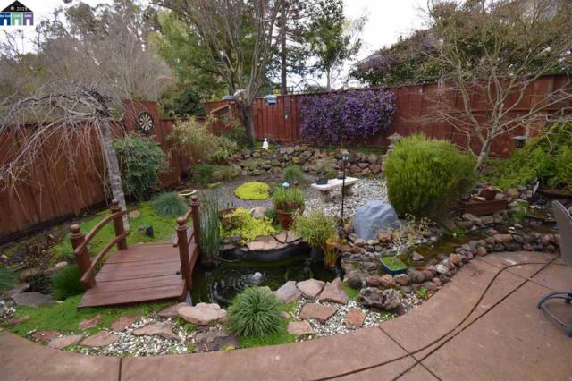 4326 Creekview Drive, Dublin, CA 94568 (#MR40856599) :: Live Play Silicon Valley