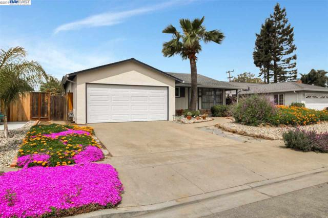 4559 Piper St, Fremont, CA 94538 (#BE40860308) :: The Kulda Real Estate Group