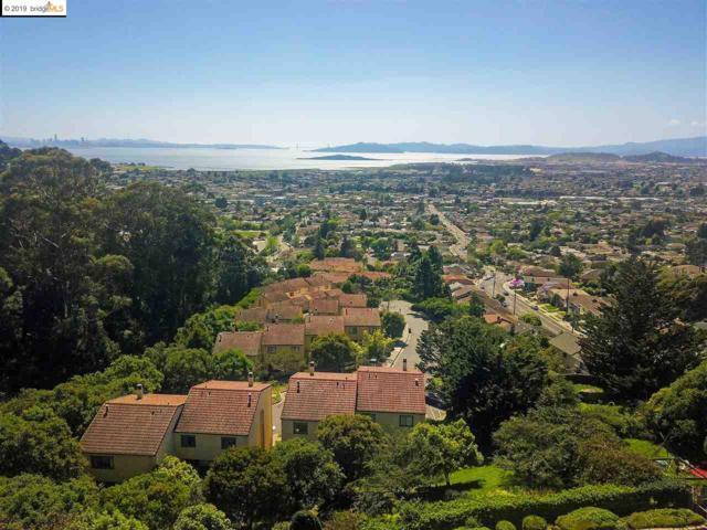 62 Wildwood Pl, El Cerrito, CA 94530 (#EB40860722) :: The Realty Society