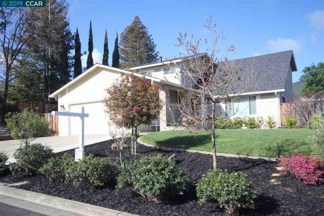 585 Mt. Olivet Pl., Clayton, CA 94517 (#CC40860852) :: The Kulda Real Estate Group