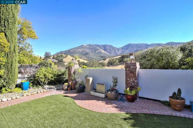309 Mountaire Pkwy, Clayton, CA 94517 (#CC40860910) :: The Kulda Real Estate Group