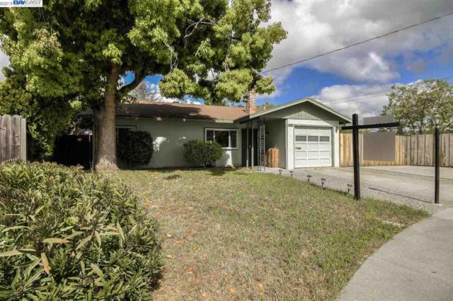 20047 Emerald Ct, Castro Valley, CA 94546 (#BE40861291) :: The Realty Society