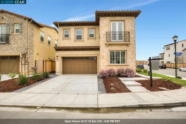 5161 Rowan Drive, San Ramon, CA 94582 (#CC40861311) :: The Realty Society