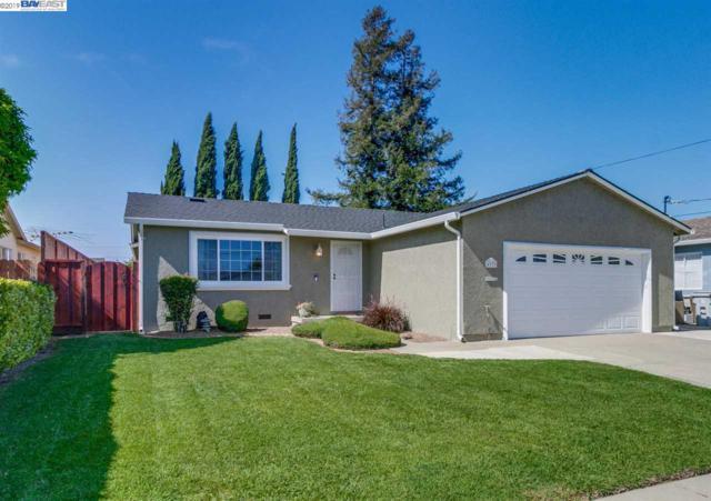 4333 Bora Bora Ave, Fremont, CA 94538 (#BE40863956) :: Brett Jennings Real Estate Experts