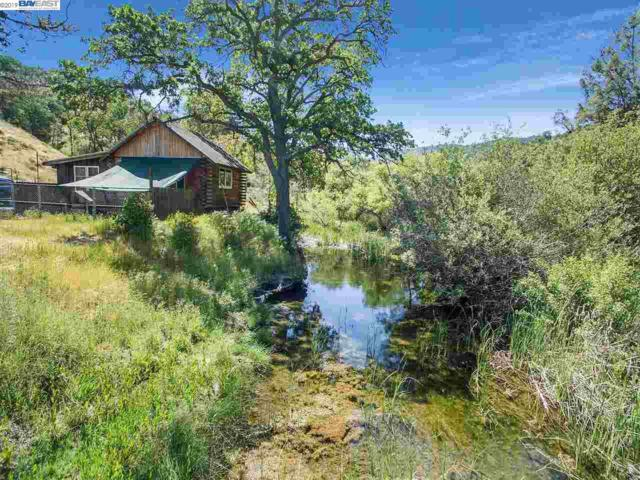 18420 Mines Rd, Livermore, CA 94550 (#BE40864539) :: Strock Real Estate