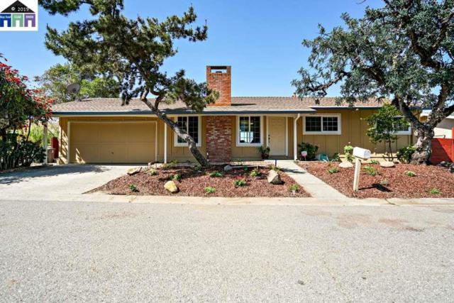 353 Monaco Ave, Union City, CA 94587 (#MR40864624) :: Strock Real Estate