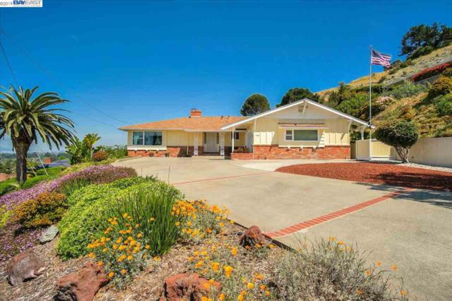1500 Daily Dr, San Leandro, CA 94577 (#BE40865375) :: Strock Real Estate