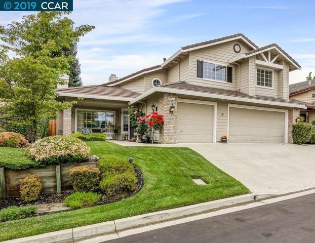 1069 Cheshire Cir, Danville, CA 94506 (#CC40865682) :: Strock Real Estate