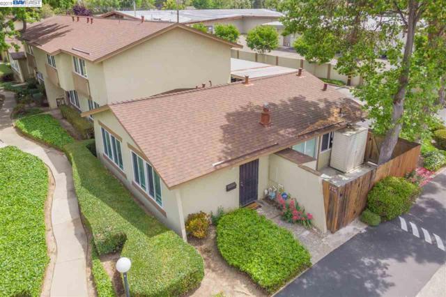 4690 Balboa Way, Fremont, CA 94536 (#BE40865763) :: Strock Real Estate