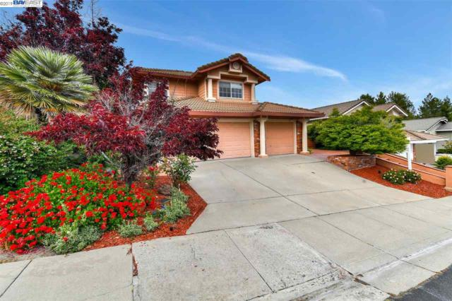 3571 Shadow Creek Dr, Danville, CA 94506 (#BE40865798) :: Maxreal Cupertino