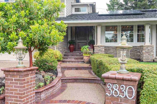 3830 Phoebe Ct, Pleasanton, CA 94566 (#BE40866093) :: Strock Real Estate