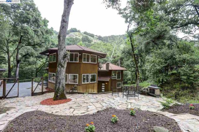 2060 Kilkare Rd, Sunol, CA 94586 (#BE40866351) :: Strock Real Estate
