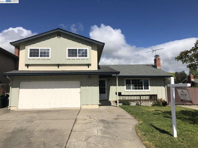 48218 Arcadian Street, Fremont, CA 94539 (#BE40868065) :: Keller Williams - The Rose Group