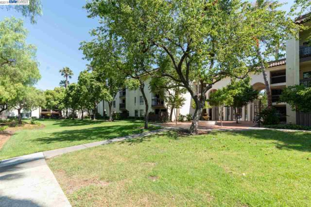 39931 Cedar Blvd, Newark, CA 94560 (#BE40870602) :: Strock Real Estate