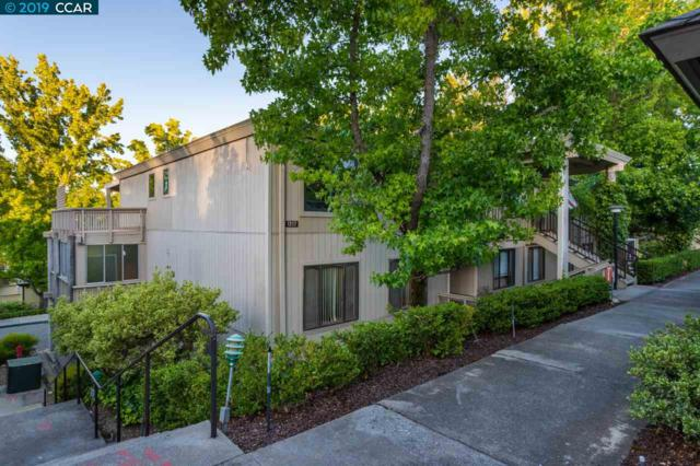 1217 Running Springs Rd, Walnut Creek, CA 94595 (#CC40871112) :: Strock Real Estate