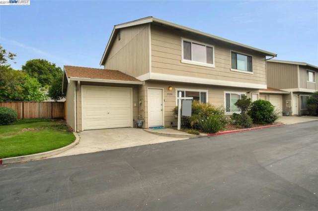 20200 San Miguel Ave, Castro Valley, CA 94546 (#BE40871218) :: Strock Real Estate