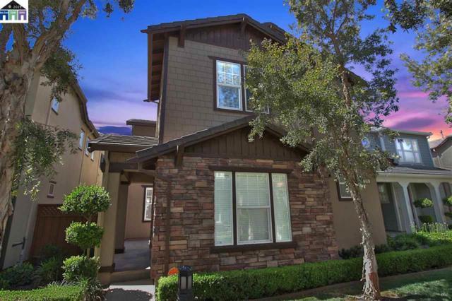 219 W Santa Barbara, Mountain House, CA 95391 (#MR40871368) :: Strock Real Estate