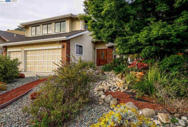 915 Rock Canyon Cir, San Jose, CA 95132 (#BE40871447) :: Strock Real Estate
