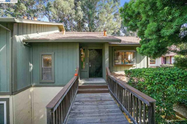 3228 Monika Ln, Hayward, CA 94541 (#BE40875126) :: Intero Real Estate