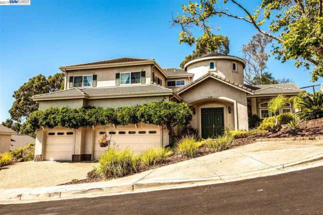 998 Silver Birch Ln, Hayward, CA 94544 (#BE40877526) :: Intero Real Estate