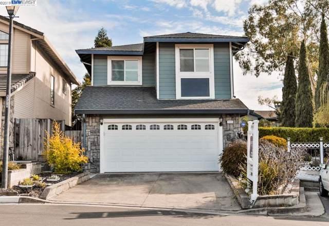 3501 Timco Ct, Castro Valley, CA 94552 (#BE40885223) :: Maxreal Cupertino