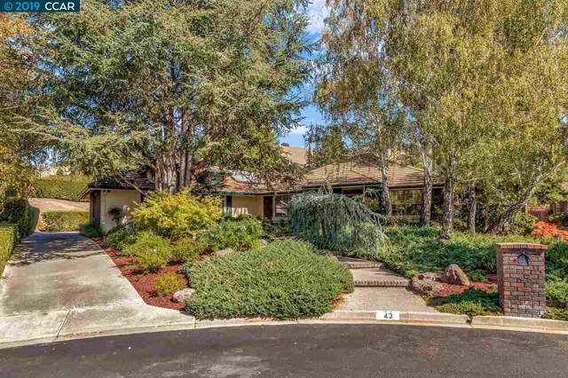 43 Hamilton Ct, Alamo, CA 94507 (#CC40886044) :: The Goss Real Estate Group, Keller Williams Bay Area Estates