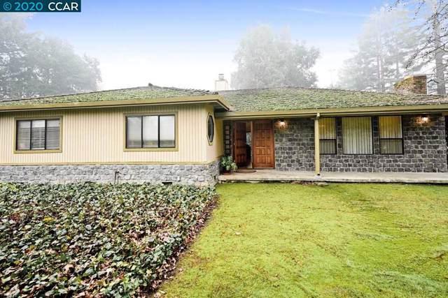 1541 Las Trampas Rd, Alamo, CA 94507 (#CC40891589) :: The Sean Cooper Real Estate Group
