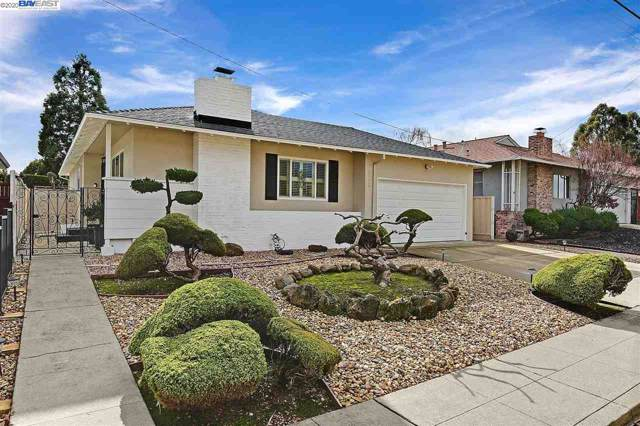 3013 Greenview Drive, Castro Valley, CA 94546 (#BE40892270) :: Strock Real Estate