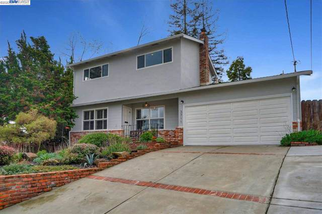 3711 Cottage Ct, Castro Valley, CA 94546 (#BE40892274) :: Strock Real Estate