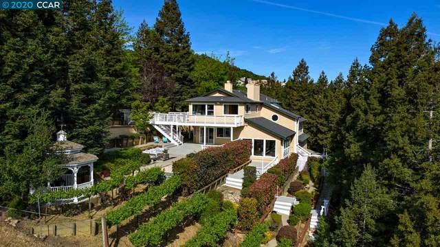 1141 Silverhill Ct, Lafayette, CA 94549 (#CC40901944) :: Alex Brant Properties