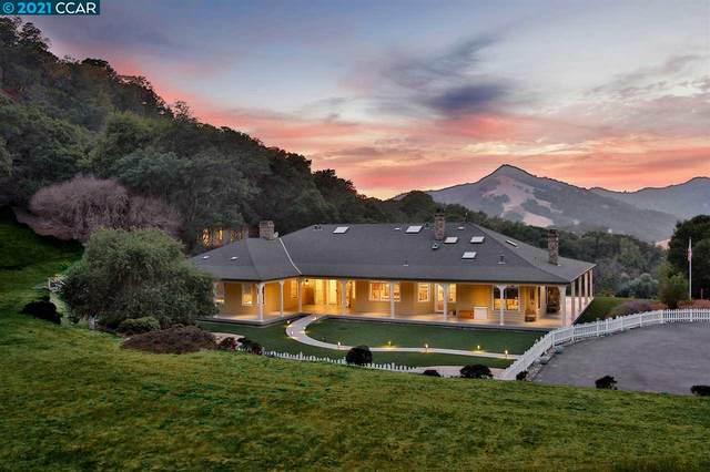 3100 Finley Rd, Danville, CA 94588 (#CC40924568) :: The Sean Cooper Real Estate Group