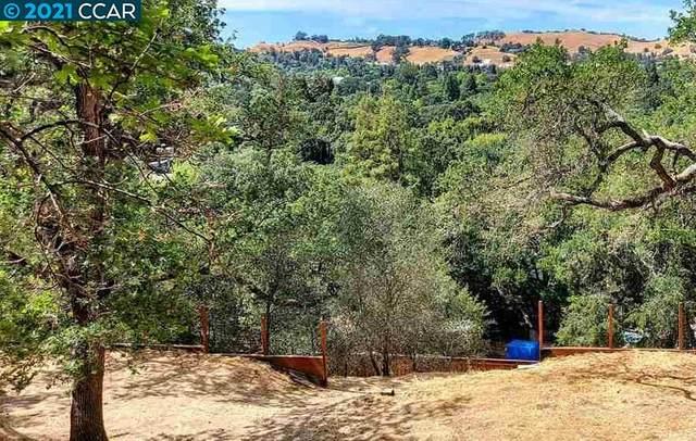247 Sequoia, Walnut Creek, CA 94595 (#CC40954561) :: The Kulda Real Estate Group